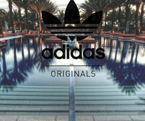 adidas, original, and pool image