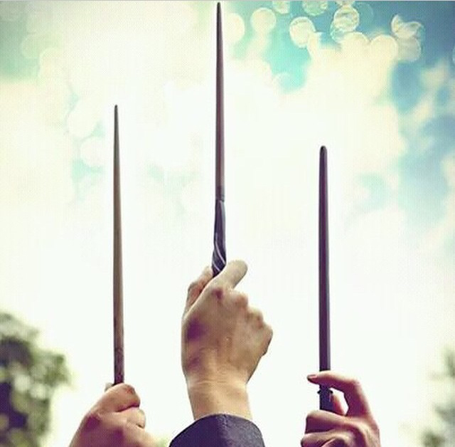 harry potter, wand, and hermione image