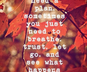 quotes, autumn, and leaves image