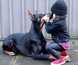 doberman, dog, and family image