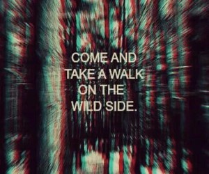 quotes, wild, and walk image