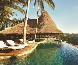 bali, pool, and summer image