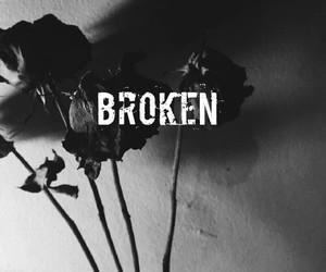 broken, black, and rose image