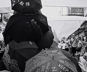 black and white, never give up, and umbrellas image