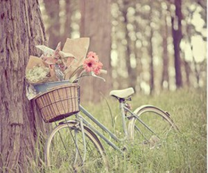 vintage, flowers, and bicycle image