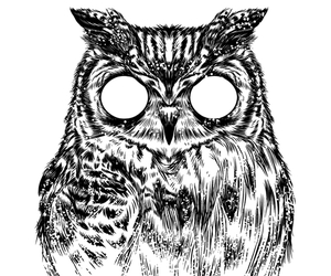 art and owltical illusion image