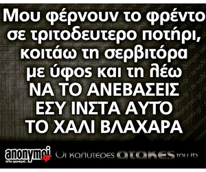 greek, quote, and funny image