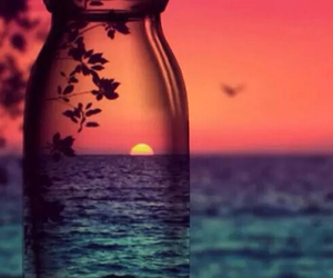 bottle, colors, and heart it image