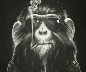 monkey, smoke, and art image