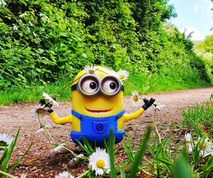 dave, despicable me 2, and flowers image