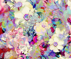 colors, flowers, and floral image