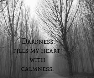alone, beautiful, and Darkness image
