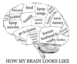 kpop and korean image