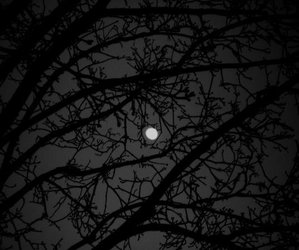 black and white and Darkness image
