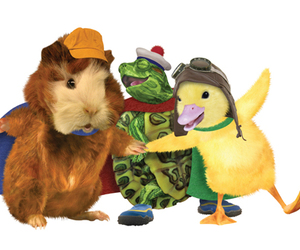 duck, hamster, and turtle image