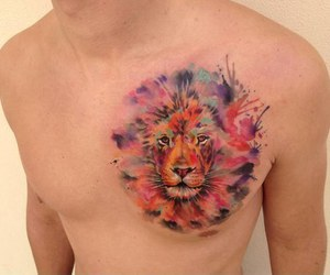 boy, cool, and lion image
