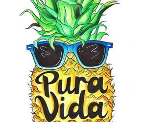 costa rica, pineapple, and pura vida image