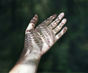 nature, hand, and indie image