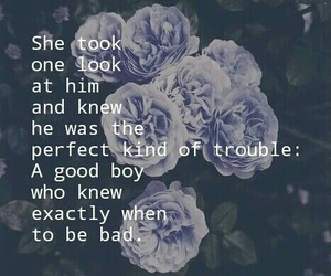 love, quote, and trouble image