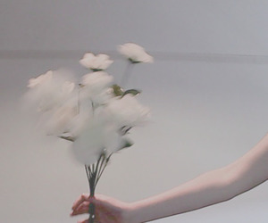 flowers, white, and pale image