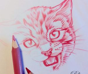 drawing and kitten image