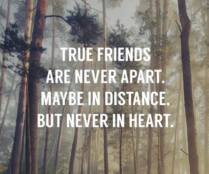 friends, quote, and heart image
