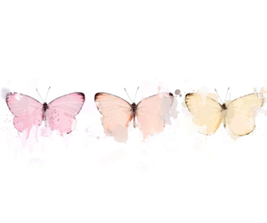 beautiful, butterflies, and insane image