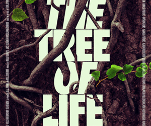 branches, tree of life, and typography image