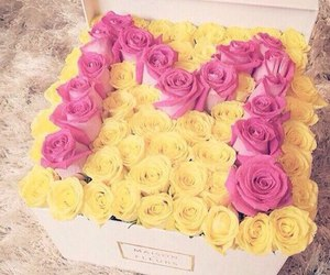 rose, flowers, and yellow image