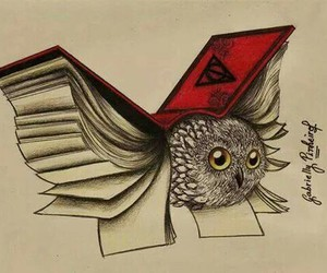 book, harry potter, and owl image