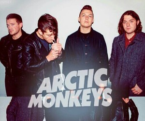 alex turner and arctic monkeys image