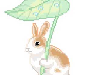 bunny, png, and transparent image