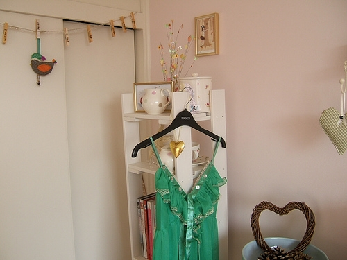 bird, deco, and clothes image