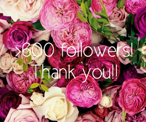 thank you, 600, and 600 followers image