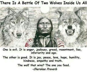 wolf, quotes, and good image