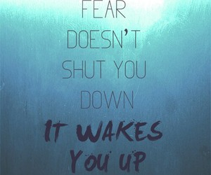divergent, fear, and quote image