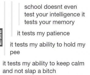 school, funny, and tumblr image