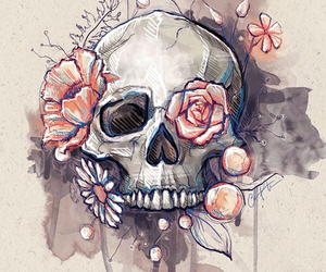 skull, art, and flowers image