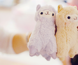 cute, llama, and kawaii image