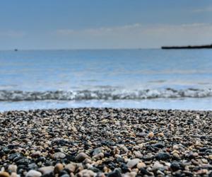 beach, brighton, and rocks image