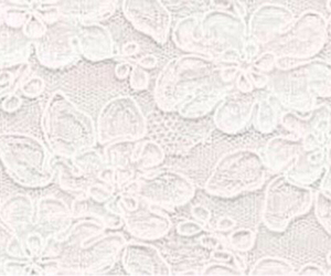 header, white, and floral image