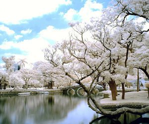 asia, pretty, and snow image