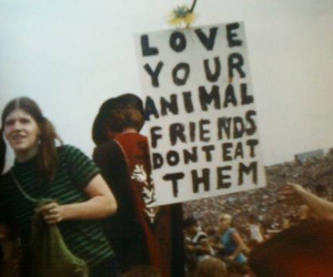 love, animal, and hippie image