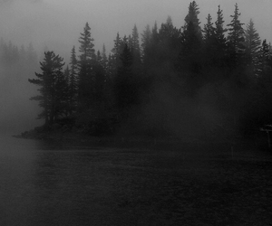 black and white, trees, and dark image