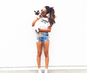 cat, mylifeaseva, and hair image