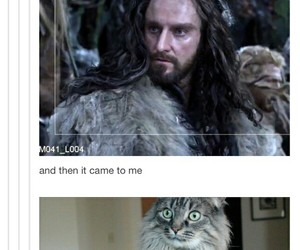 funny, the hobbit, and thorin oakenshield image