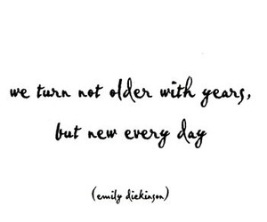 emily dickinson, everyday, and life image