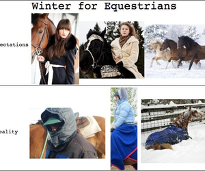 cold, equestrian, and expectation image