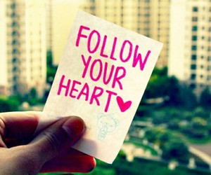 follow, heart, and photography image