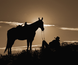 cowboy, horse, and old west image